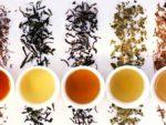 правильно выбрать хороший чай