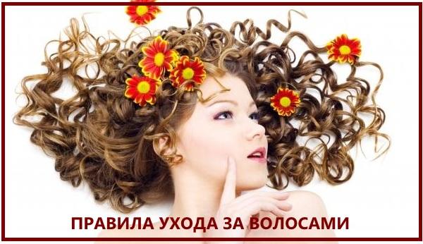 правила ухода за волосами.jpg
