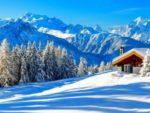 Зимние рецепты укрепляющие организм.